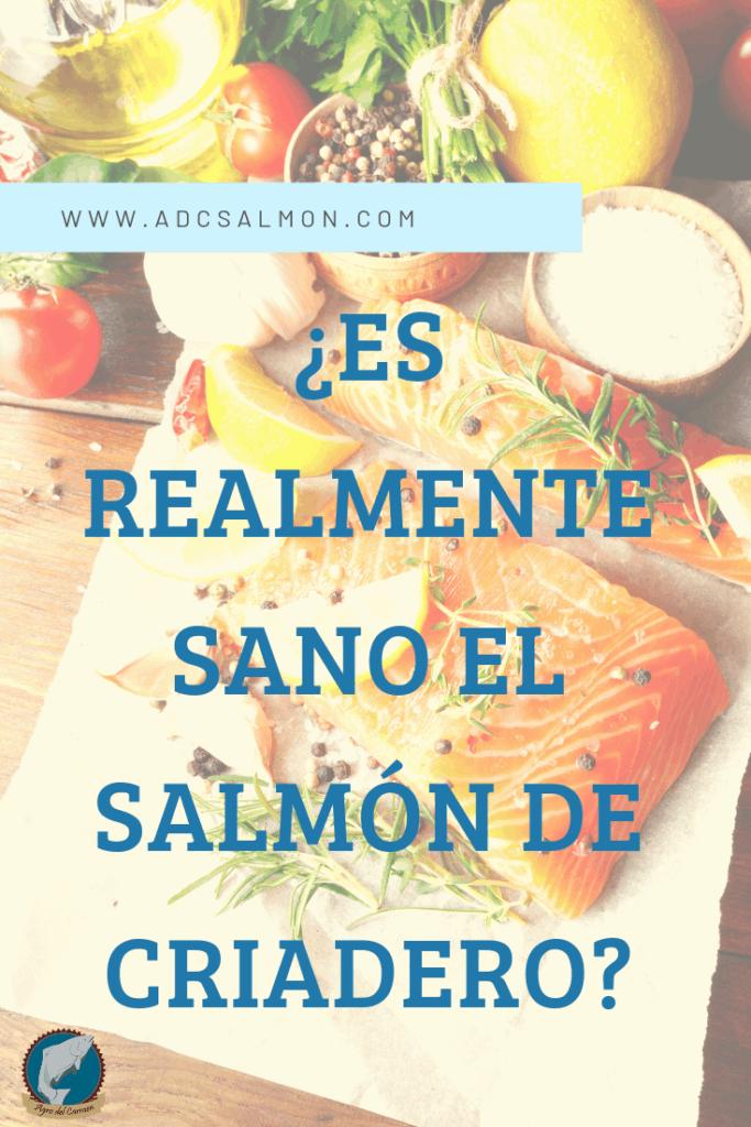 la verdad sobre el salmón de criadero