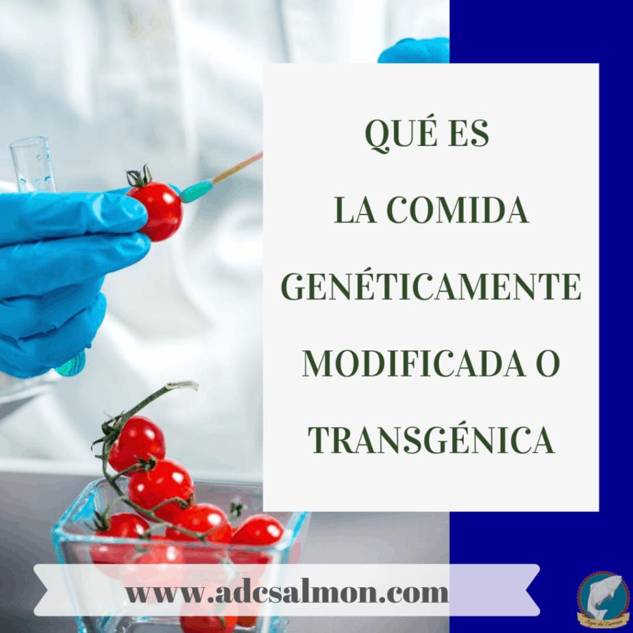 Qué es la comida genéticamente modificada o transgénica